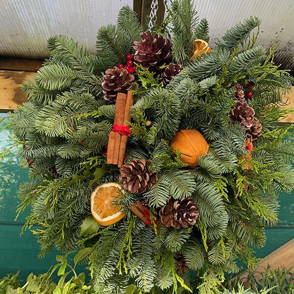 Festive Orange Fruit Ball | Marl Pits Garden Centre